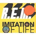 R.E.M. - Imitation Of Life Record