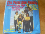 Partridge Family - Breaking Up Is Hard To Do