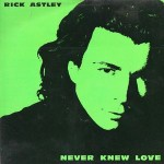 Never Knew Love - Rick Astley