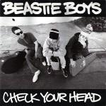 Beastie Boys - Check Your Head Record