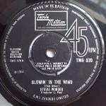 Stevie Wonder - Blowin\' In The Wind