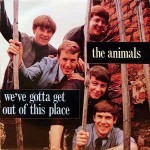 Animals We\'ve Gotta Get Out Of This Place