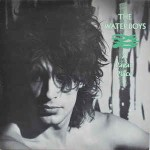 Waterboys  A Pagan Place
