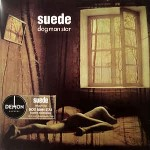 Suede  Dog Man Star
