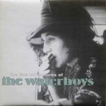 Waterboys  The Live Adventures Of The Waterboys