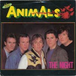 Animals  The Night