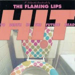 Flaming Lips  Hit To Death In The Future Head