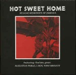 Various Hot Sweet Home - Reggae Memories Of Jamaica