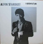 Alvin Stardust  A Picture Of You