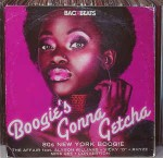 Various Boogie's Gonna Getcha (80s New York Boogie)